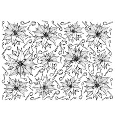 Hand drawn of christmas poinsettia flowers with ca vector