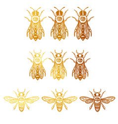 Set with bees bees with eye occult bees vector