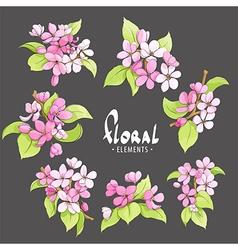 Delicate cherry flowers vector