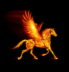 Fire pegasus in motion on black background vector