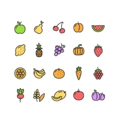 Fruits and Vegetables Icon Set vector image vector image