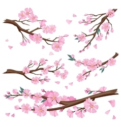 Realistic Sakura Japan Cherry Branch vector image
