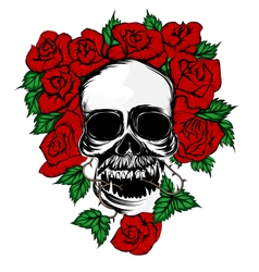 Rose and skull vector
