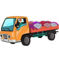 Truck transports flowers vector