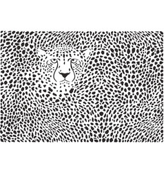 Background cheetah skins and head vector