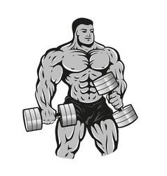 bodybuilder with dumbbells vector image
