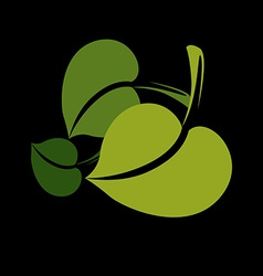 Two flat green leaves herbal and botany art symbol vector