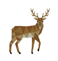 polygonal deer vector image