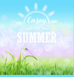 Green grass lawn with bokeh blue sky enjoy summer vector