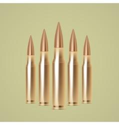 Rifle bullets vector
