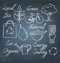 set of eco icons and lettering on chalkboard vector image vector image