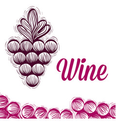 Wine grapes doodle vector