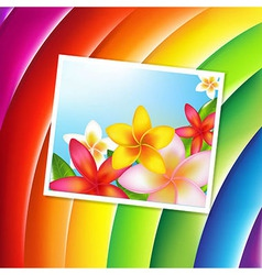 Fantastic color background with flowers card vector