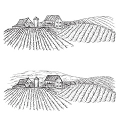 Landscape with fields and villages vineyard vector