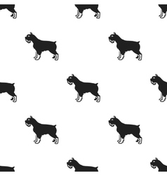 Schnauzer icon in black style for web vector image