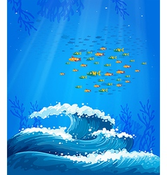 A school of fish and the waves vector
