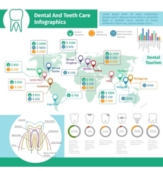 Dental infographics vector image