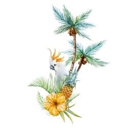 Watercolor tropical palm vector