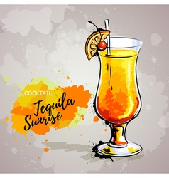 Hand drawn cocktail tequila vector