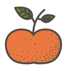 Isolated tangerine fruit design vector