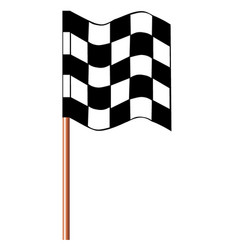 chequered racing flag vector image