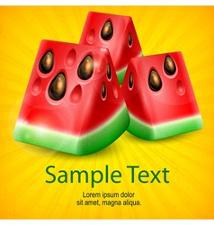 Watermelon on yellow vector