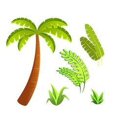 Jungle leaves and grass elements set vector