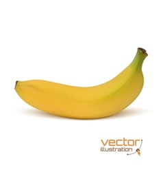 Realistic banana icon isolated on white vector image vector image