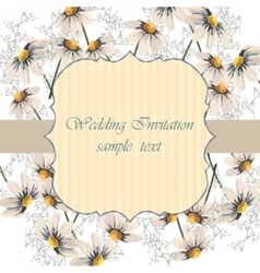 Watercolor painted chamomile flowers vector