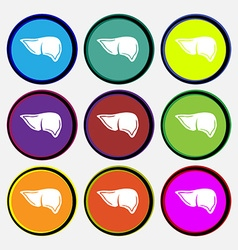 Liver icon sign nine multi colored round buttons vector