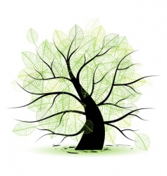 big old tree green leaf vector image vector image