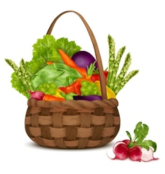 Vegetables in basket vector
