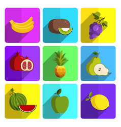 colorful fruit icon set on bright background vector image