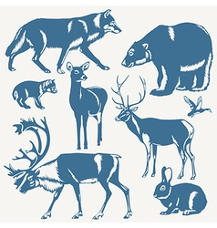 northern animals vector image