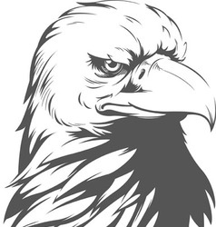 Bald eagle silhouette vector