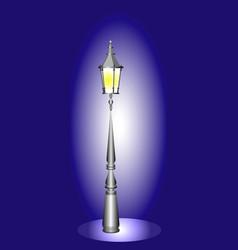 night street light vector image