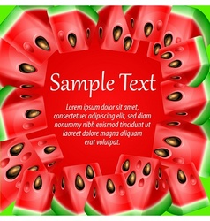 Watermelon background vector image