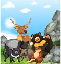Wild animals in the park vector