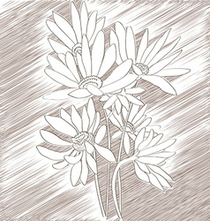 Daisies sketch vector