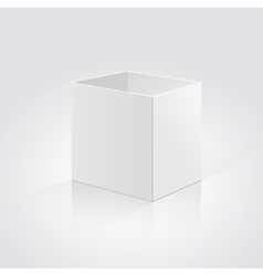 Open box isolated on a white background vector image