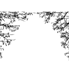 tree branches frame vector image