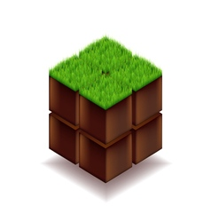 Isometric cube from earth and grass vector