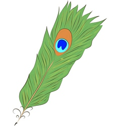 peacock Feather- vector image