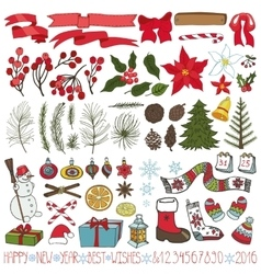 Christmas tree branchesflowersdecoration kit vector image vector image