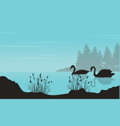 Art of swan landscape silhouettes vector