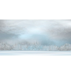 winter gray background vector image vector image