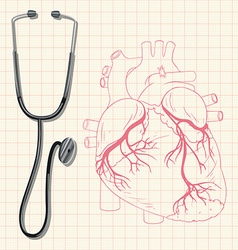 Stethoscope and human heart vector