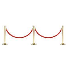 barriers with red rope vector image