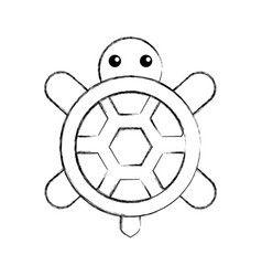 Cute turtle isolated icon vector