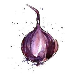 Watercolor purple onion bulb vector